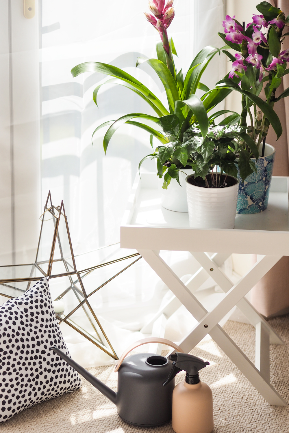 Today I'm sharing how to create an indoor garden in your city apartment, when outdoor space is something you crave. Teaming up with Lazy Flora, discover more about their indoor plant subscription service.